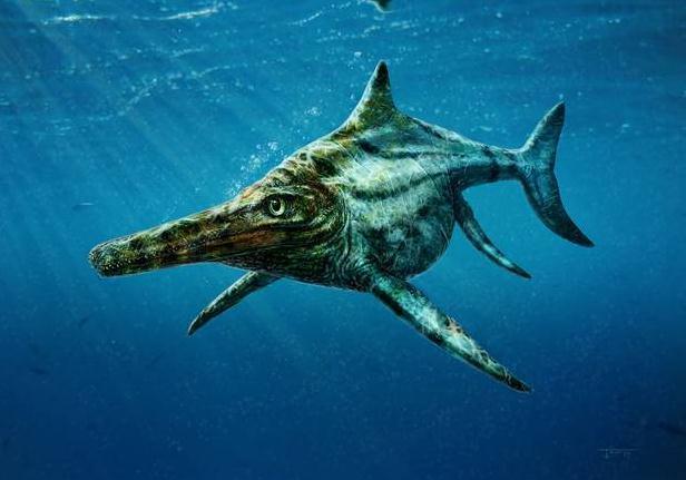 海洋爬行动物所统治